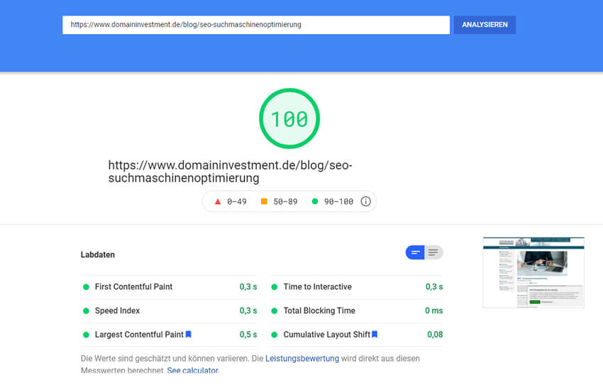 Screenshot Google PageSpeed Insights